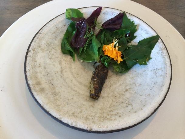 Salad root