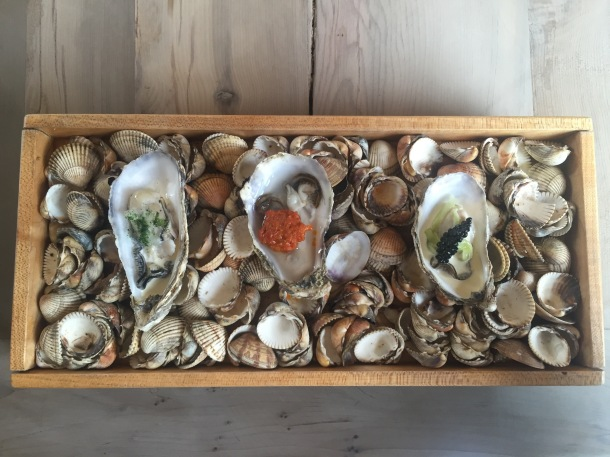Oysters The Sportsman